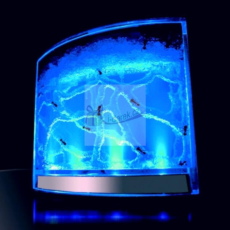Mravenčí akvárium s LED podsvícením - antquarium (+ návod)