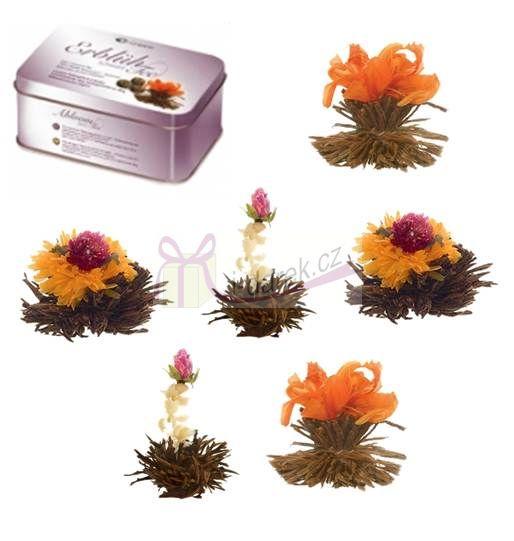 Elegantní balení v krabičce - 6 ks černý kvetoucí čaj