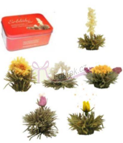 Elegantní balení v krabičce - 6 ks bílý kvetoucí čaj