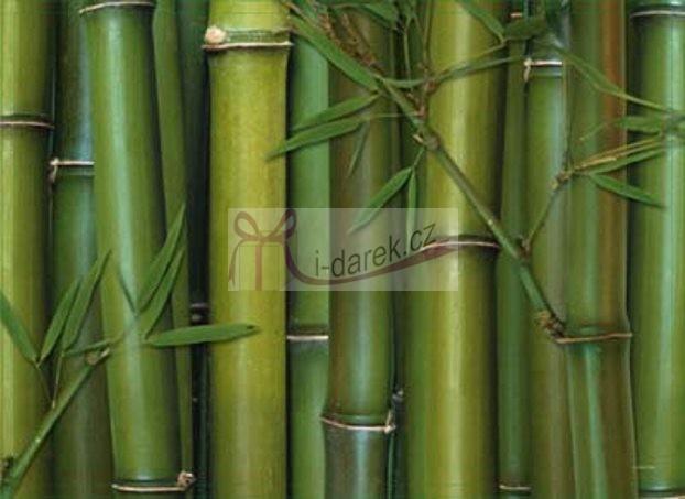 Korkové prostírání velké 40x29cm sada 4ks - bambus