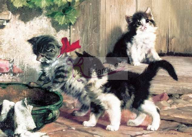 Korkové prostírání velké 40x29cm sada 4ks - kočičky